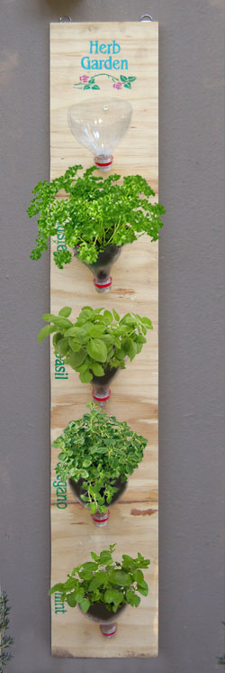 Vertical Plastic Bottle Herb Garden