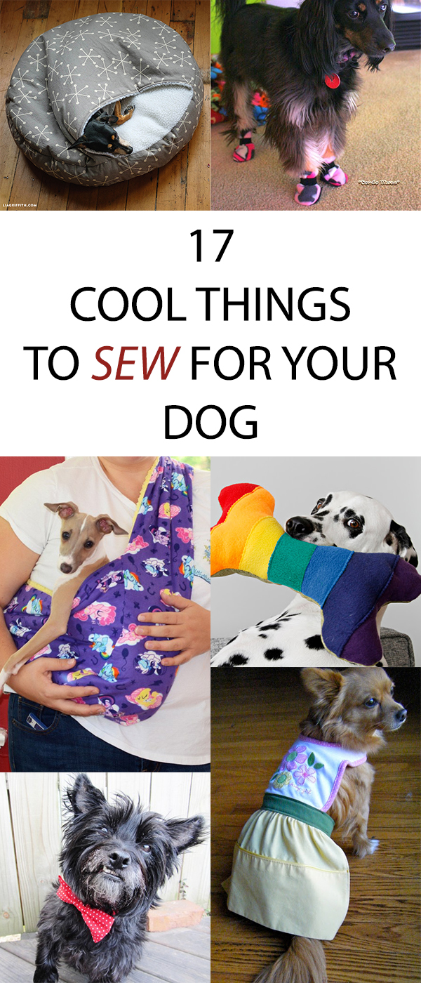 17 Cool Things to Sew for Your Dog