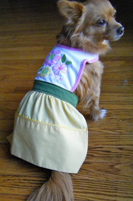 Homemade Dog Dress