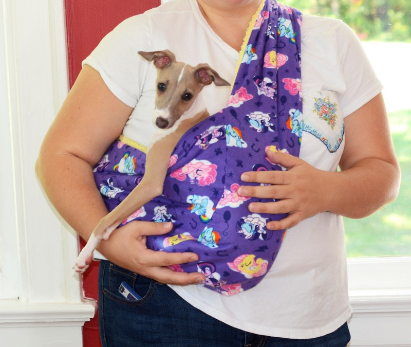 Soft and Cozy Pet Sling