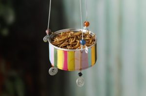 Tuna Can Feeder