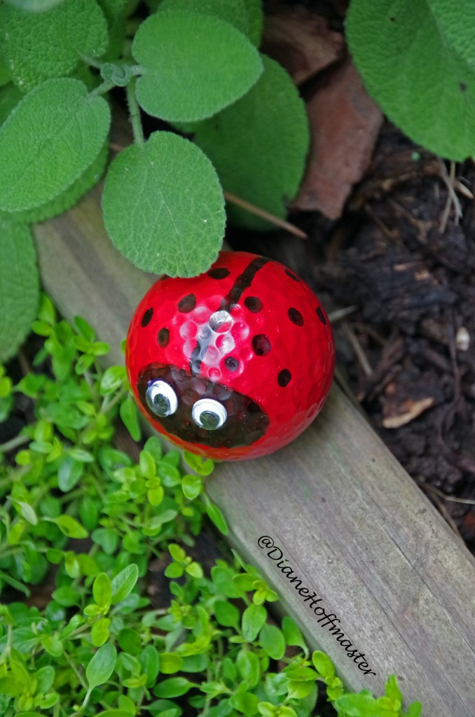 Golf Ball Lady Bug