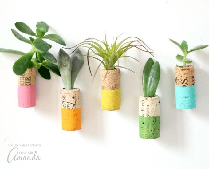wine cork succulent magnets