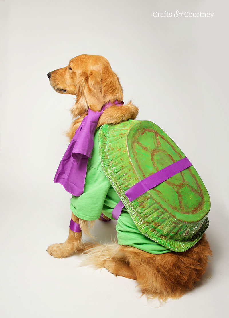 Fun Teenage Mutant Ninja Turtle Dog Costume