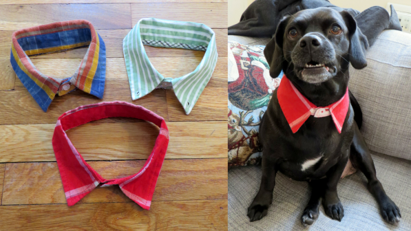 Doggie Dress Shirt Collar