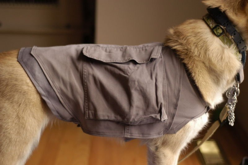 Doggy Cooling Vest