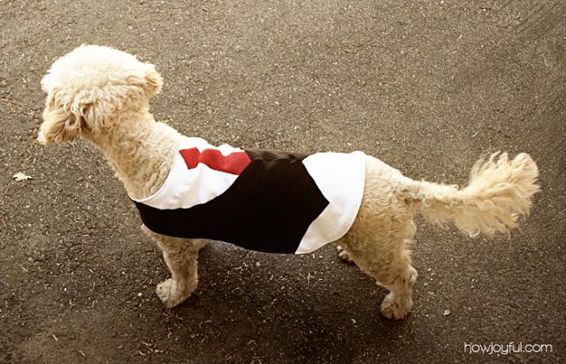 Elegant Dog Vest