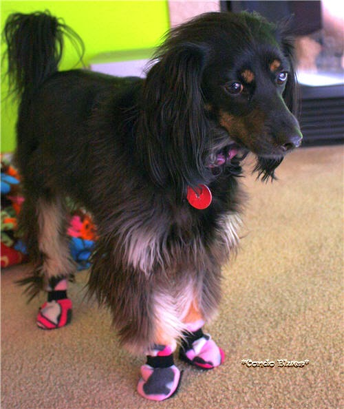 Fleece Dog Booties