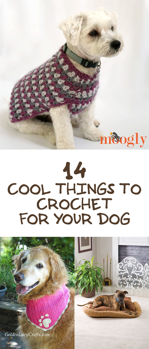 14 Cool Things To Crochet For Your Dog