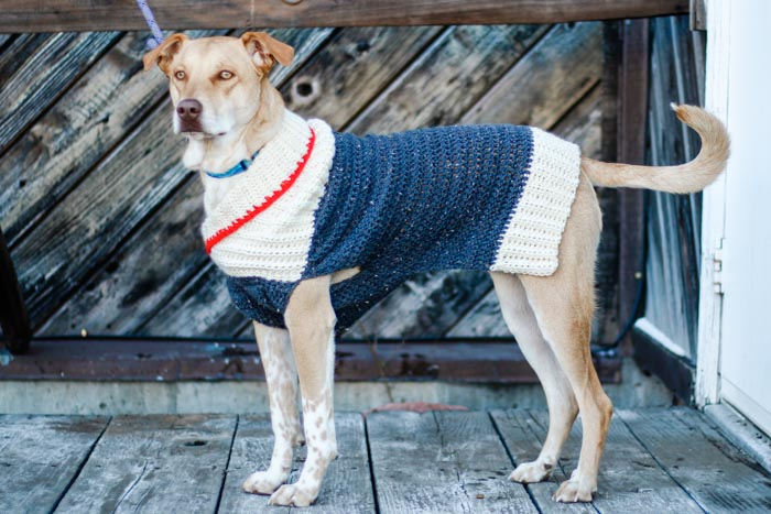Easy Crochet Dog Sweater
