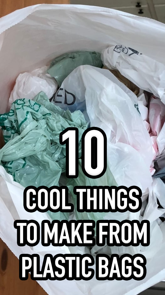 10 Cool Things To Make From Plastic Bags